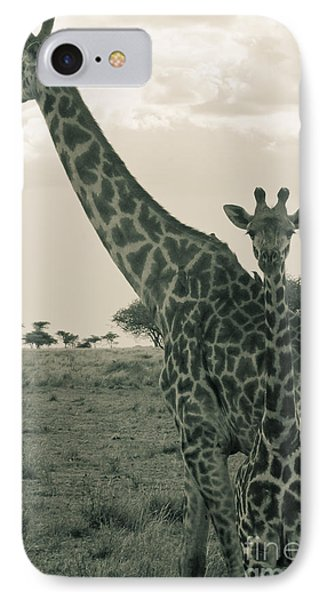 Young Giraffe With Mom In Sepia IPhone Case by Darcy Michaelchuk