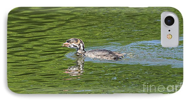 Young Grebe IPhone Case by Marv Vandehey