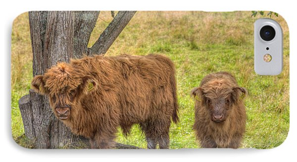 Young Highland IPhone Case by Veikko Suikkanen