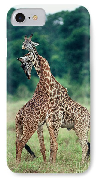 Young Male Giraffes Necking Phone Case by Greg Dimijian