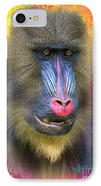 Young Mandrill IPhone Case