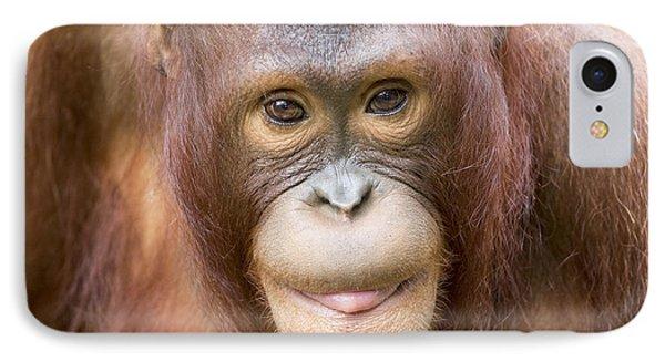 Young Orangutan Portrait Phone Case by John McQuiston