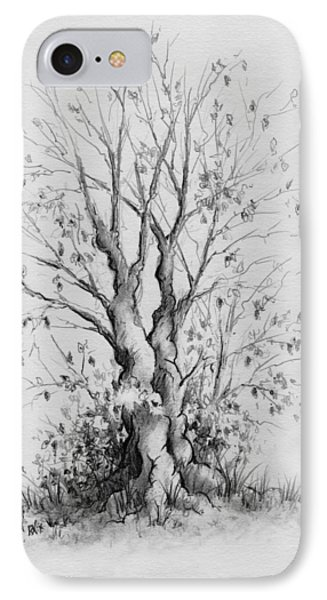 Young Tree IPhone Case by Rachel Christine Nowicki