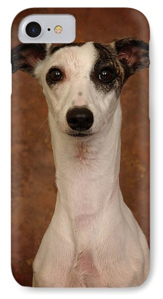 IPhone Case featuring the photograph Young Whippet by Greg Mimbs