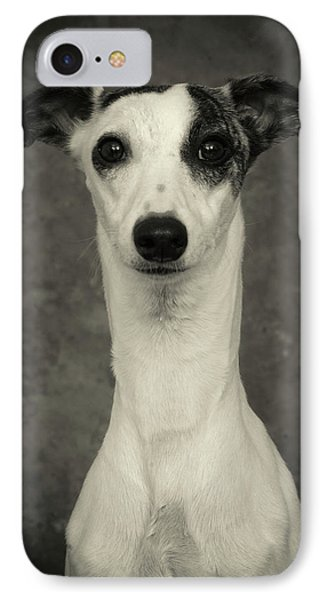 IPhone Case featuring the photograph Young Whippet In Black And White by Greg and Chrystal Mimbs