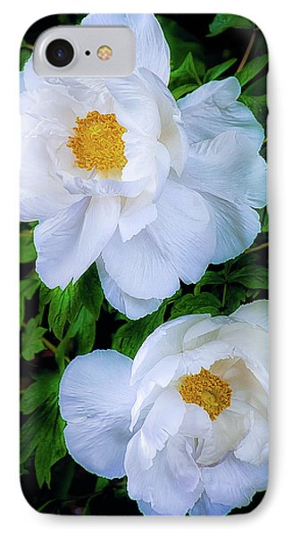 IPhone Case featuring the photograph Yu Ban Bai Chinese Tree Peonies by Julie Palencia