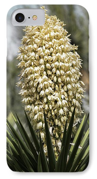 IPhone Case featuring the photograph Yucca Flowers In Bloom  by Saija Lehtonen