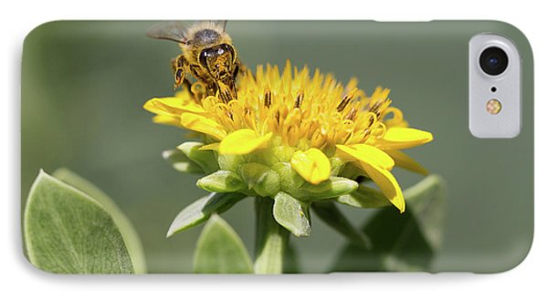 Yumm Pollen IPhone Case by Christopher L Thomley