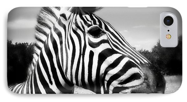 Zebra 2 Phone Case by Perry Webster