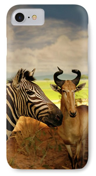 Zebra And Antelope Phone Case by Marilyn Hunt