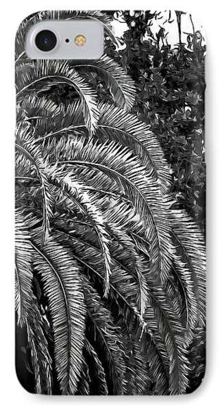 IPhone Case featuring the photograph Zebra Palm by DigiArt Diaries by Vicky B Fuller