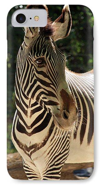 Zebra Portrait Phone Case by Aidan Moran