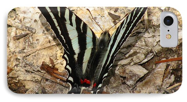 IPhone Case featuring the photograph Zebra Swallowtail by Donna Brown