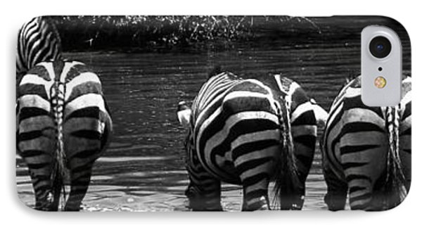 Zebras Cautiously Drinking IPhone Case by Darcy Michaelchuk