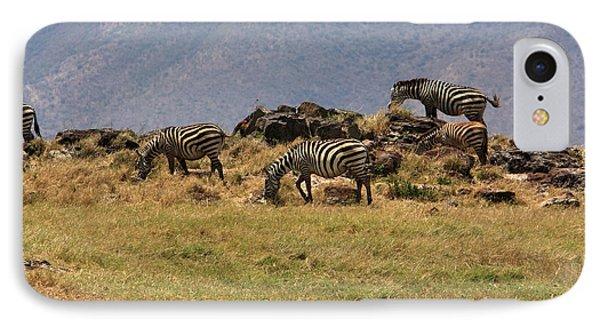 Zebras In The Ngorongoro Crater, Tanzania Phone Case by Aidan Moran