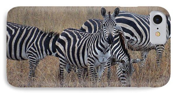 Zebras Walking In The Grass 2 IPhone Case by Exploramum Exploramum