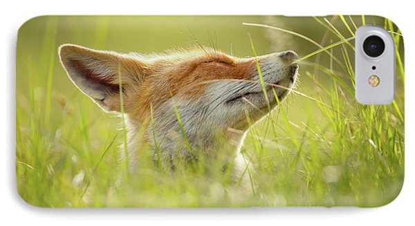 Zen Fox Series - Summer Zen Fox IPhone Case