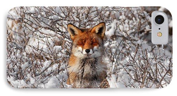 Zen Fox Series - Zen Fox In The Snow IPhone Case by Roeselien Raimond
