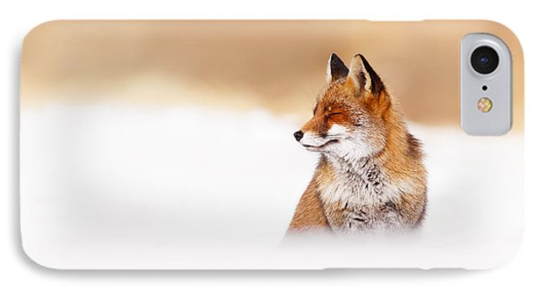 Zen Fox Series - Zen Fox In Winter Mood IPhone Case by Roeselien Raimond