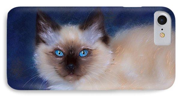 Zen Ragdoll Cat IPhone Case by Michelle Wrighton