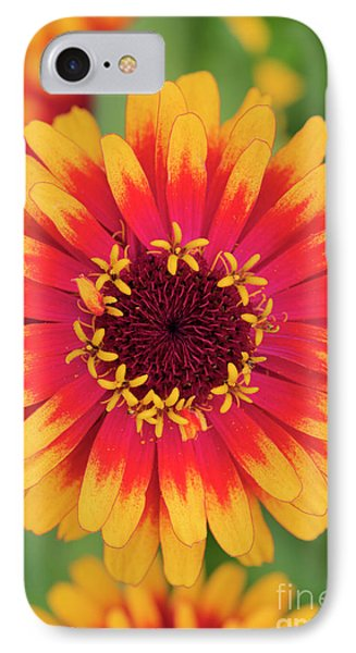 IPhone Case featuring the photograph Zinnia Elegans Zowie Yellow Flame Flower  by Tim Gainey