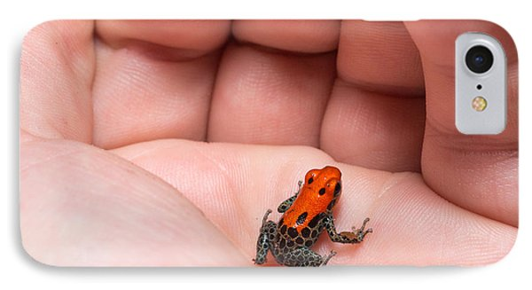 South America iPhone 7 Case - Red-backed Poison Frog, Ranitomeya by Christian Vinces
