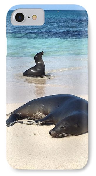 Shore iPhone 7 Case - Sea Lions On The Shore by Kpuleo