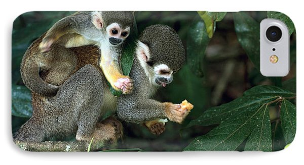 South America iPhone 7 Case - Squirrel Monkey In Amazon Rainforest by Ksenia Ragozina