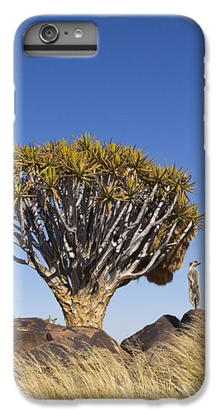 Meerkat iPhone 7 Plus Case - Meerkat In Quiver Tree Grassland by Vincent Grafhorst