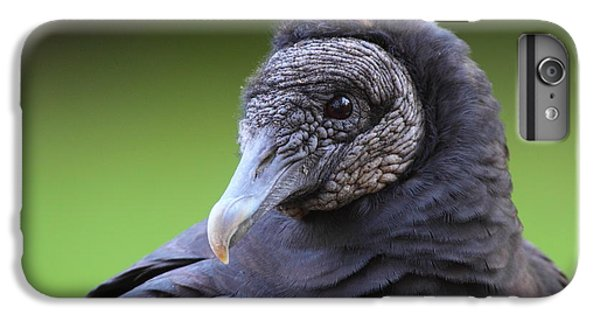 Black Vulture Portrait IPhone 7 Plus Case by Bruce J Robinson