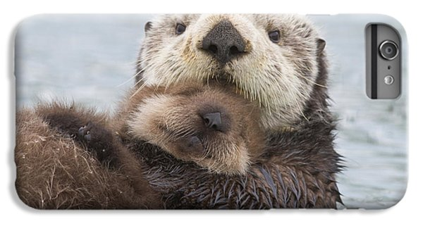 Otter iPhone 7 Plus Case - Female Sea Otter Holding Newborn Pup by Milo Burcham