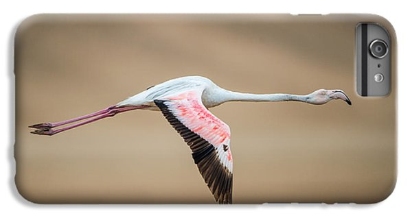 Greater Flamingo Phoenicopterus Roseus IPhone 7 Plus Case by Panoramic Images