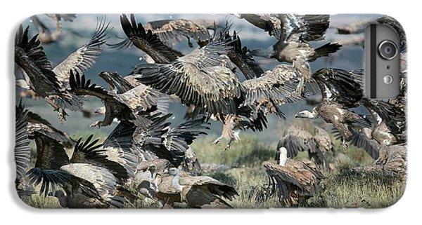 Griffon Vultures IPhone 7 Plus Case by Nicolas Reusens