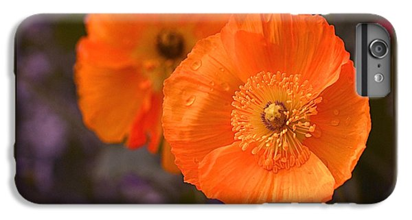 Orange Poppies IPhone 7 Plus Case