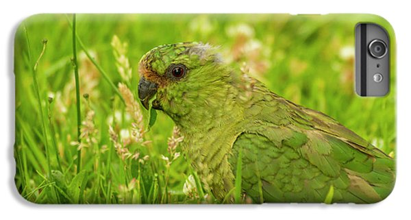 Parakeet iPhone 7 Plus Case - South America, Chile, Patagonia, Torres by Jaynes Gallery