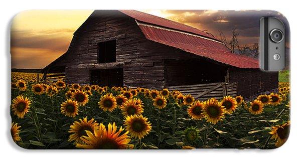 Sunflower Farm IPhone 7 Plus Case