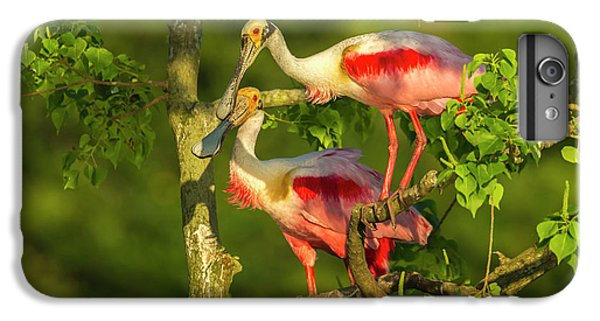 Usa, Louisiana, Jefferson Island IPhone 7 Plus Case