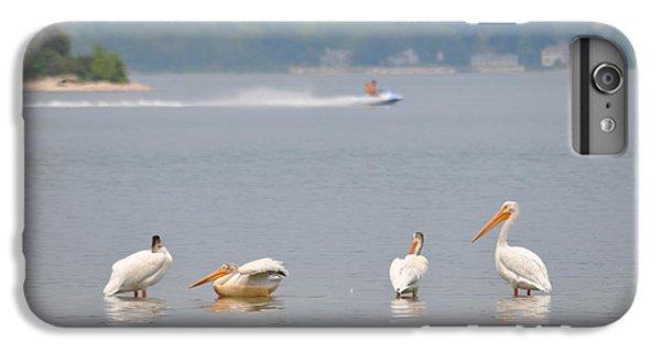 Jet Ski iPhone 7 Plus Case - 4 Pelicans by Jeremy Evensen