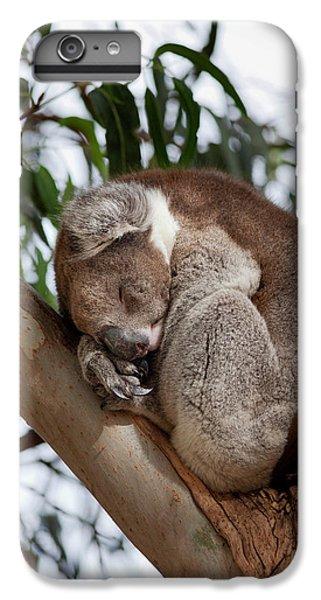 Koala (phascolarctos Cinereus IPhone 7 Plus Case by Martin Zwick