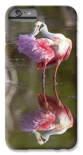 Usa, Florida, Everglades National Park IPhone 7 Plus Case