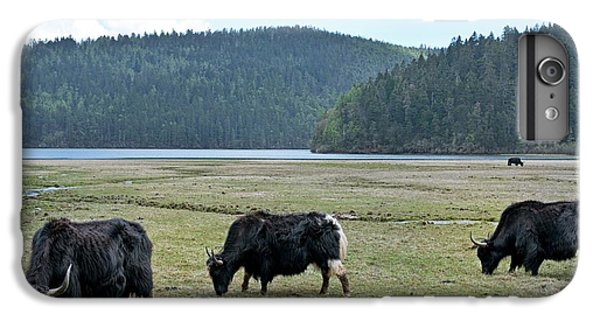 A Herd Of Yaks In Potatso National Park IPhone 7 Plus Case by Tony Camacho