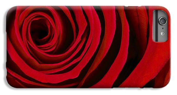 Rose iPhone 7 Plus Case - A Rose For Valentine's Day by Adam Romanowicz