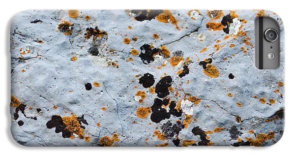 Abstract Orange Lichen 1 IPhone 7 Plus Case