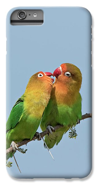 Lovebird iPhone 7 Plus Case - Africa, Tanzania, Serengeti by Charles Sleicher