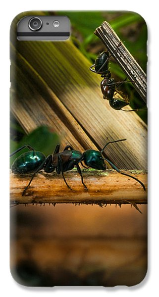 Ants Adventure 2 IPhone 7 Plus Case by Bob Orsillo