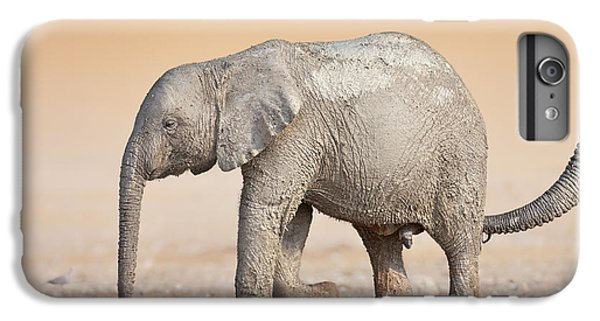 Cow iPhone 7 Plus Case - Baby Elephant  by Johan Swanepoel
