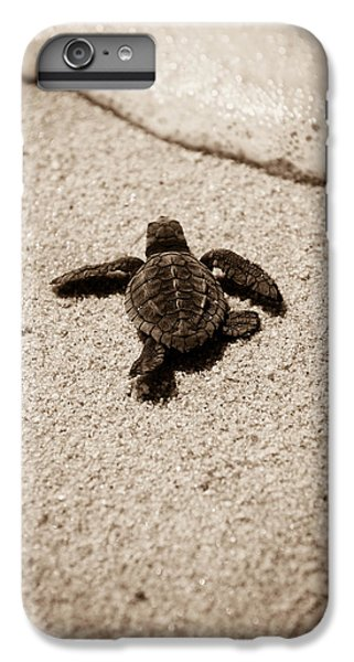 Baby Sea Turtle IPhone 7 Plus Case