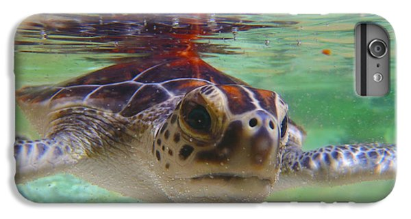 Shrimp Boats iPhone 7 Plus Case - Baby Turtle by Carey Chen