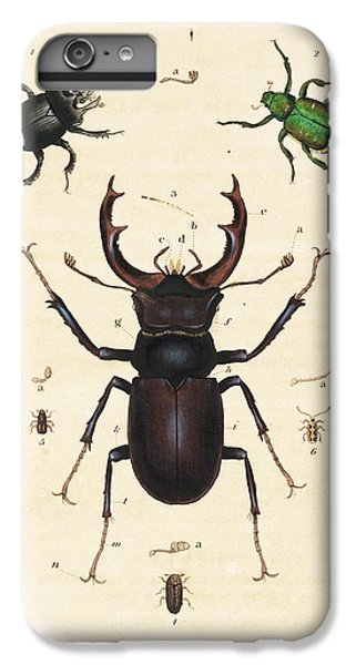 Minotaur iPhone 7 Plus Case - Beetles by King's College London