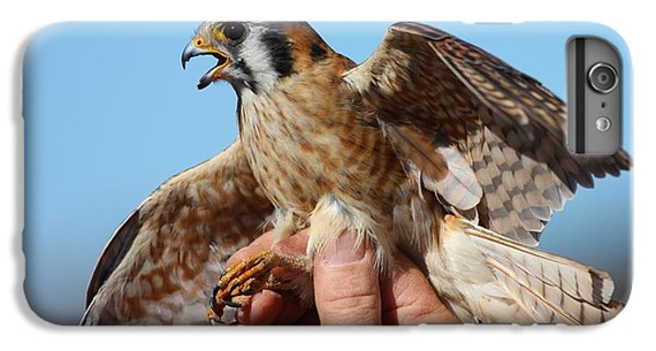 IPhone 7 Plus Case featuring the photograph Behold The American Kestrel by Nathan Rupert